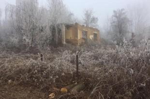 Spalili im i kuću i njivu a sada posjekli i šumu (1)