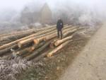 Spalili im i kuću i njivu a sada posjekli i šumu (3)