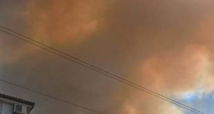 Od sinoć je na zadarskom području buknulo 10-ak požara...