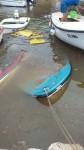poplave u zadru (5)