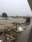 poplave u zadru (8)