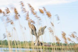 Spomenik u Spomen području Jasenovac / Foto Hina