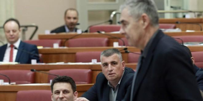 Saborski zastupnik Željko Glasnović / Foto: Hina