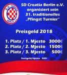 Plakat_Pfingst Turnier_2018_neu-01 (2)