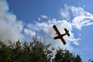 Kod Lokve Rogoznice veliki požar - izgorjelo 50 hektara borove šume/Foto: Hina/Ilustracija