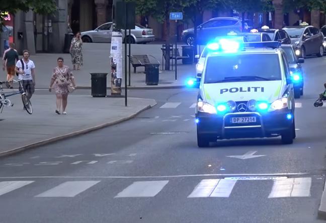 OBJAVLJENI DETALJI: Muškarac se ukradenim vozilom hitne zaletio u ljude, ozlijeđene bebe