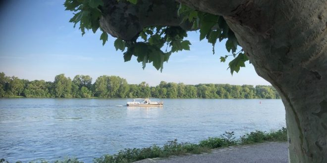 rijeka rajna gliser